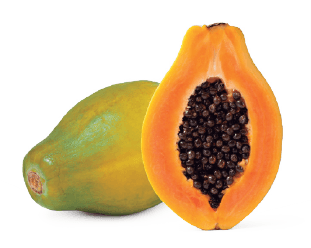 La papaya bio de tropical millenim