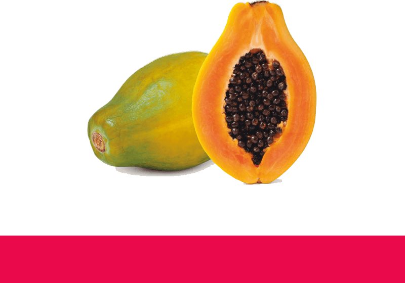 tropical millenium – papaye